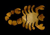 Horoskop Škorpijon junij 2016