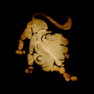 Horoskop Lev julij 2015